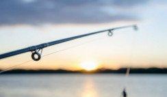 pesquero