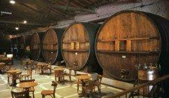 bodega ruta del vino
