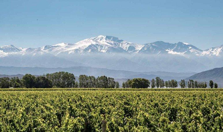 Mendoza-y-el-turismo
