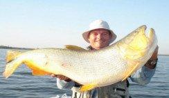 pesca-de-dorado-rio-hondo