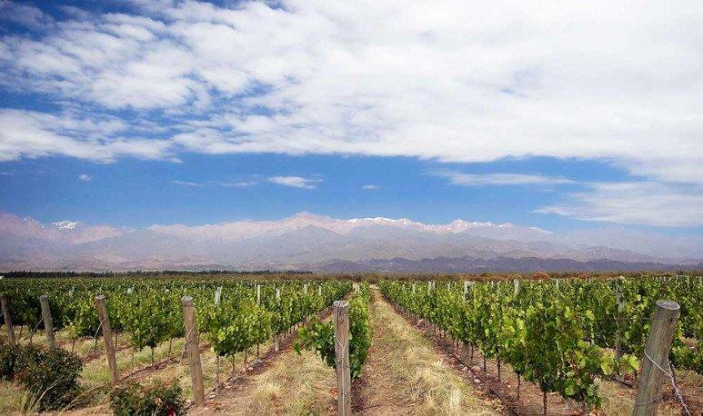 Cruce-los-Andes-Valle-de-Uco