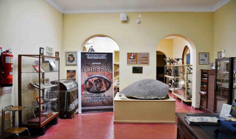 """Lobería Museo de Ciencias Naturales """"Gesué Pedro Noseda"""""""