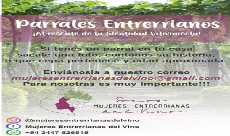 Mujeres entrerrianas del vino