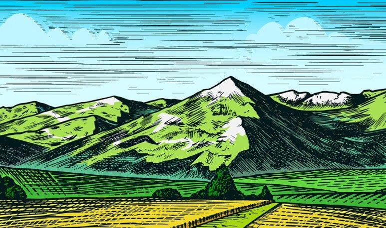 hierbas del monte