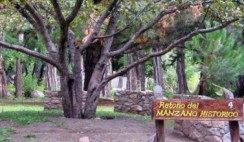 Manzano Histórico San Martín