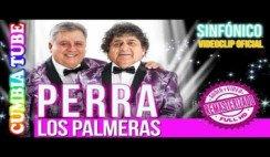 Los Palmeras - Perra   Sinfónico   Audio y Video Remasterizado Full HD   Cumbia Tube
