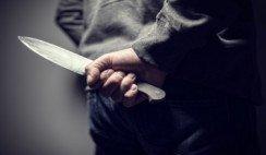 Mi vecino el asesino