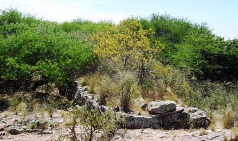Yacimiento Arqueológico Cerro de los Viejos