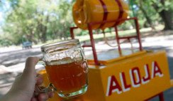 bebidas Santiago del estero