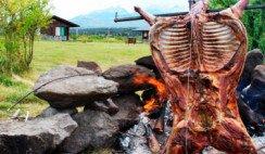 chivato patagónico