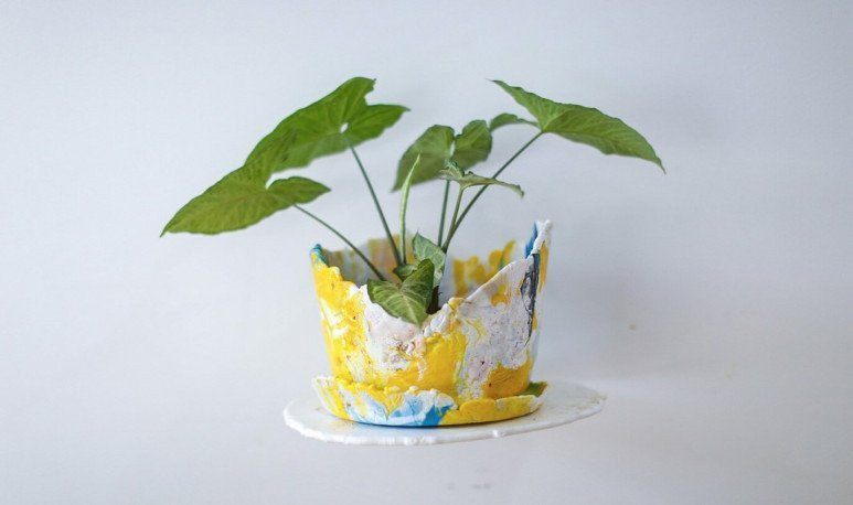 nahuel clandestine flower pot