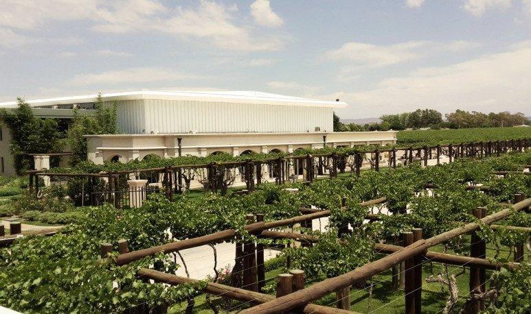 agostino farm