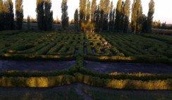 el laberinto de borges