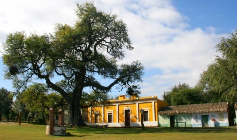 arboles históricos de argentina