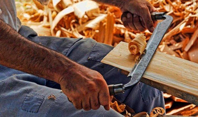 Día del Carpintero
