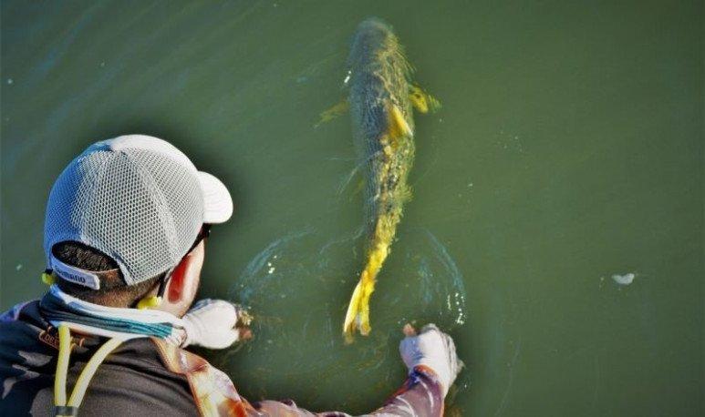 https://www.serargentino.com/turismo/corrientes/donde-pescar-en-corrientes