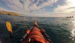 kayak en peninsula valdes
