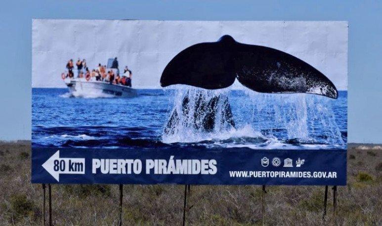 puerto piramides chubut patagonia