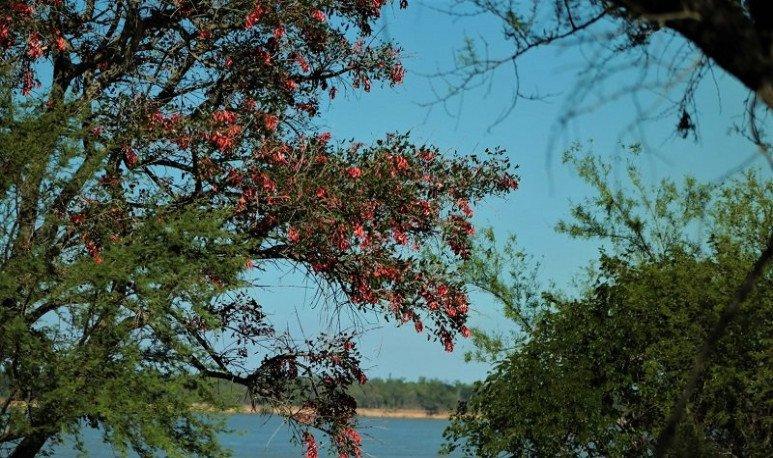El Parque Nacional Islas de Santa Fe