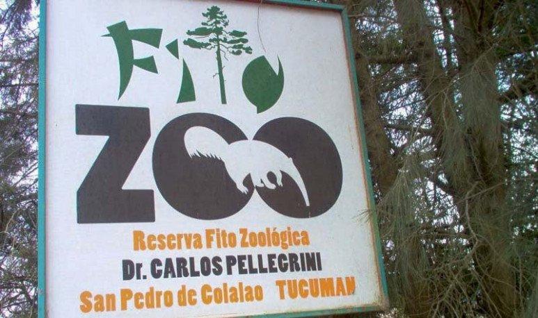 Te hacemos un listado de opciones para disfrutar con chicos si estás en la provincia de Tucuman