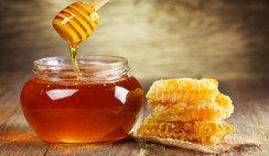 Todo sobre la miel
