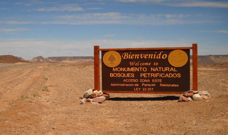 Visitar el Parque Nacional Bosques Petrificados en la provincia de Santa Cruz es, sin lugar a duda es ingresar en el túnel del tiempo, te contamos porque