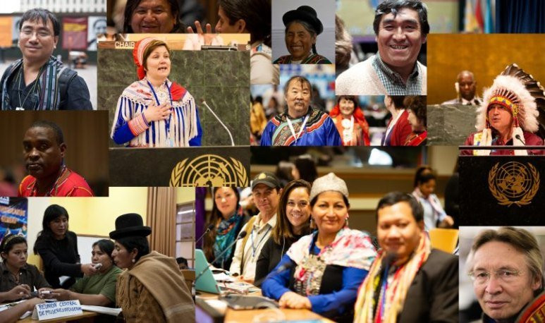 Pueblos indígenas ONU